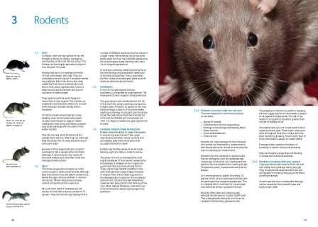 CIEH Rodent spread
