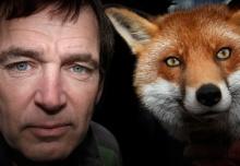 Mark Evans - Foxes Live