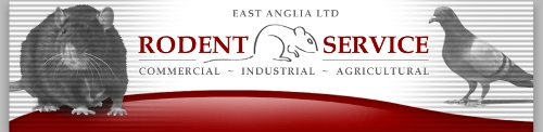 Rodent Services logo