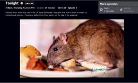 Tonight super rats