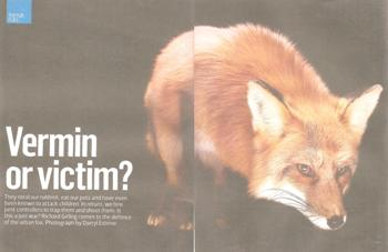 Sunday Times 8 January 2012