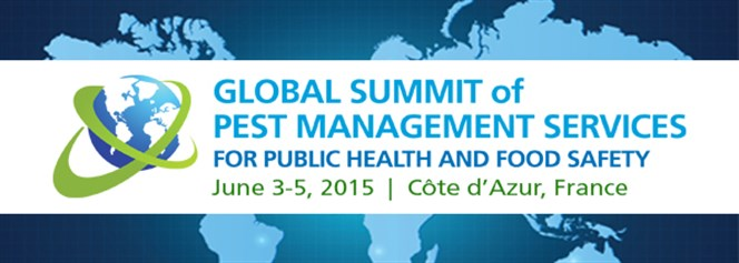 Global summit logo