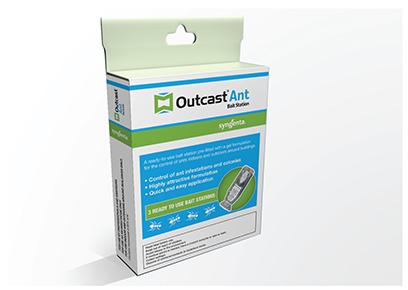 Outcast Ant