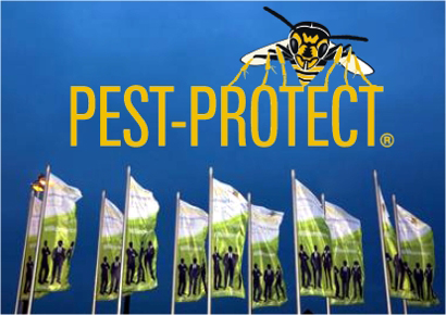 Pest-Protect logo and flags