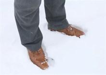 Snow 2 Feet