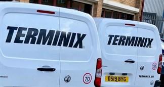 Vans For Web