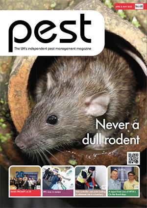 Pest Magazine