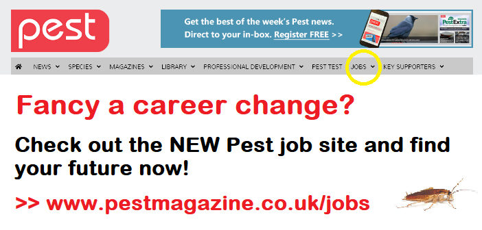 New job platform now live on the Pest website